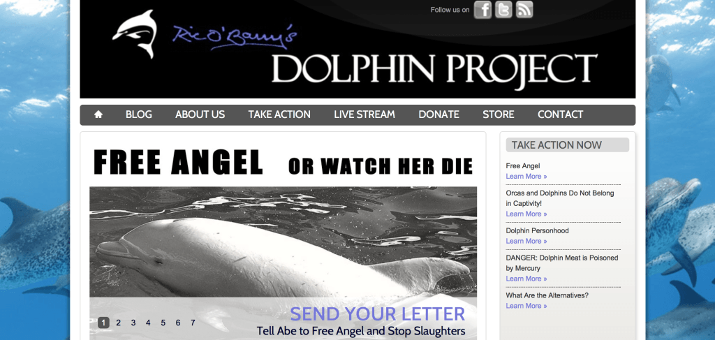 Ric O'Barry's Dolphin Project