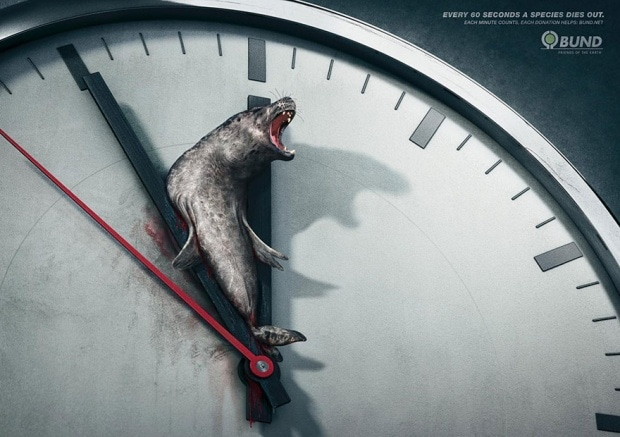 Every 60 Seconds a Species Dies Out. Each Minute Counts