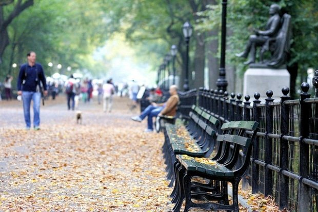 Central Park Benches by Phil Roeder, Flickr, CC BY 2.0.