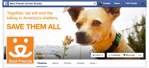 facebook.com/bestfriendsanimalsociety