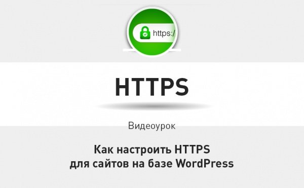 Как улучшить защиту данных и настроить HTTPS для сайта на базе WordPress смотрите в видеоуроке Теплицы.